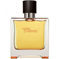 Terre d'Hermes EDP for men-عطر تق هرمس ادو پرفیوم مردانه